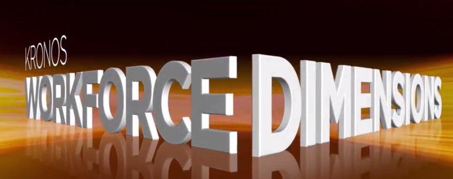 workforce dimensions